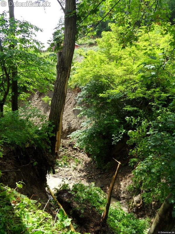 Padajúca časť brehu odštiepila zo stromu