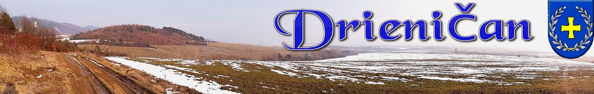 Drieničan