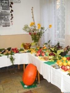 Záhradkárska výstava Drienica