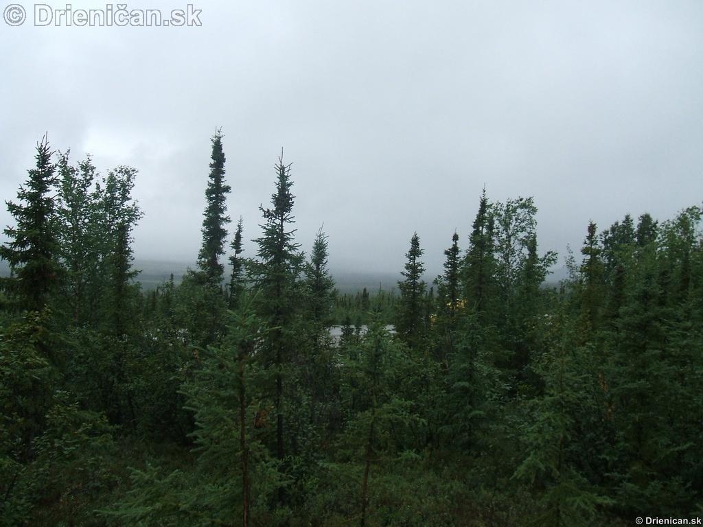 Alaska, Aliaška
