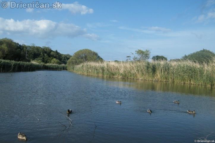 Arklow Ireland