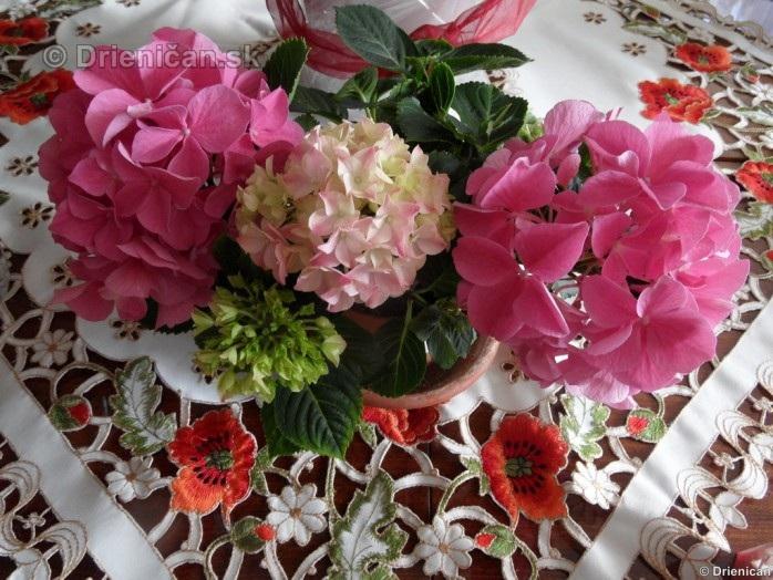 Blahozelame 26 Marec 2012_02