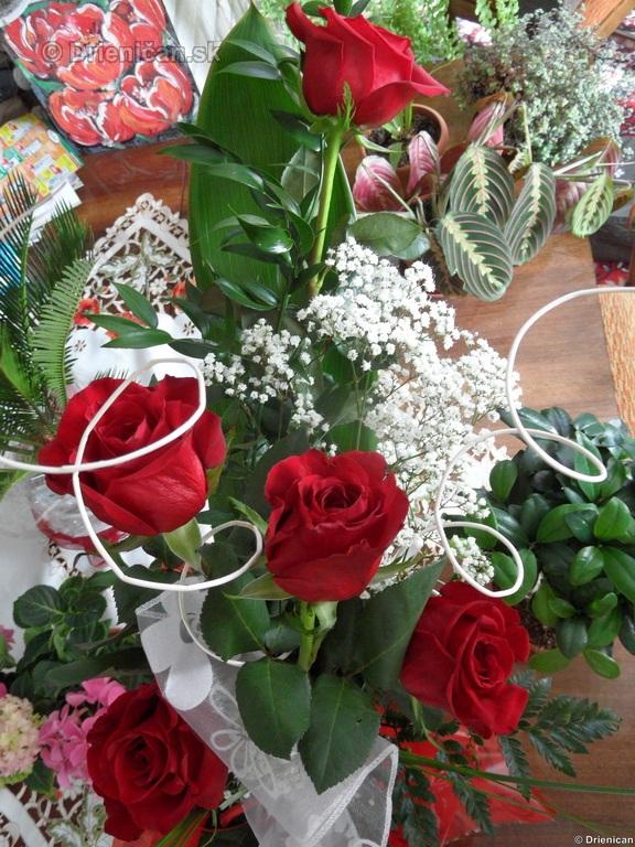 Blahozelame 26 Marec 2012_03