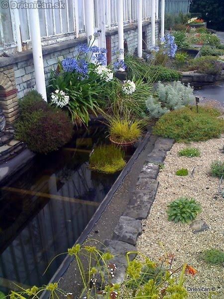 Botanic Gardens Glasnevin Dublin_040