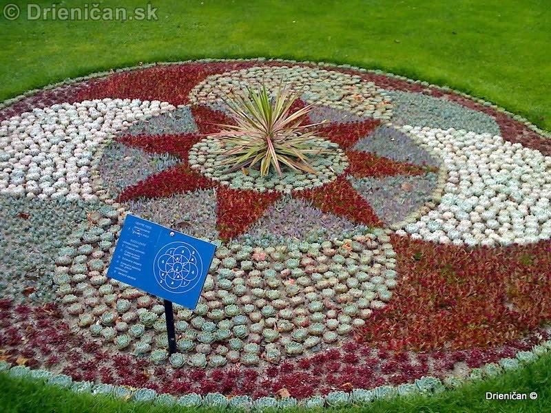 Botanic Gardens Glasnevin Dublin_046