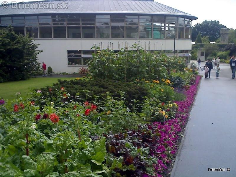 Botanic Gardens Glasnevin Dublin_047