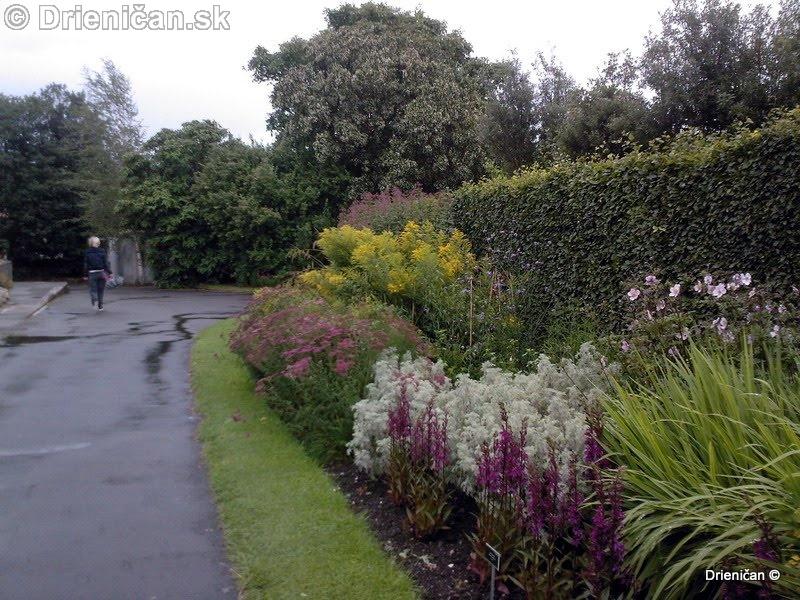 Botanic Gardens Glasnevin Dublin_067