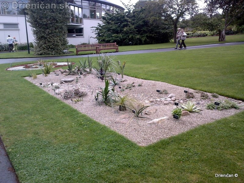 Botanic Gardens Glasnevin Dublin_076