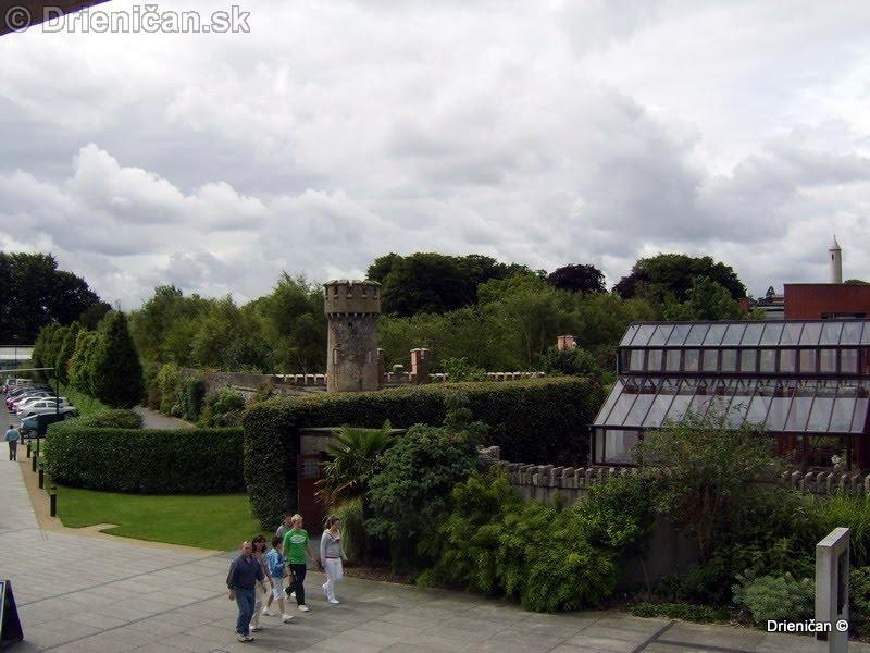 Botanic Gardens Glasnevin Dublin_085