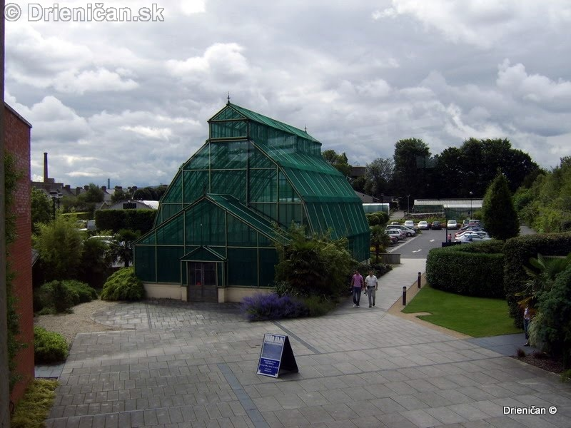 Botanic Gardens Glasnevin Dublin_087