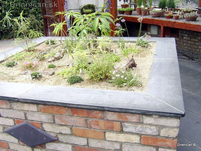 Botanic Gardens Glasnevin Dublin_089