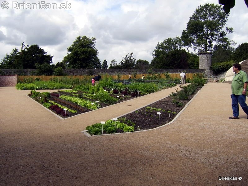 Botanic Gardens Glasnevin Dublin_102