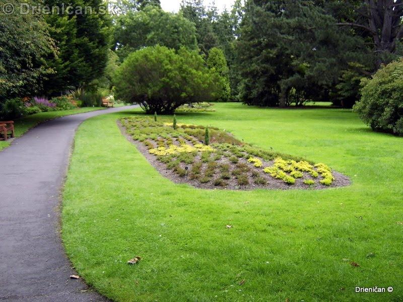 Botanic Gardens Glasnevin Dublin_125