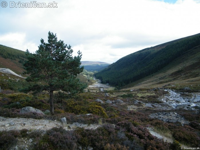 Glendalough Wicklow_21