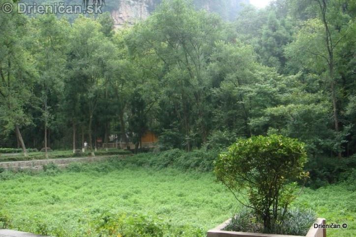 Guilin Zhangjiajie_13