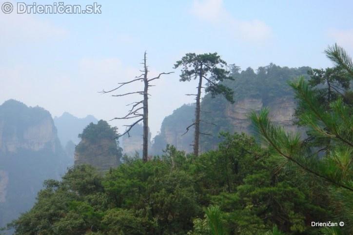 Guilin Zhangjiajie_34
