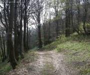 Oltar Kameň Drienica cesta