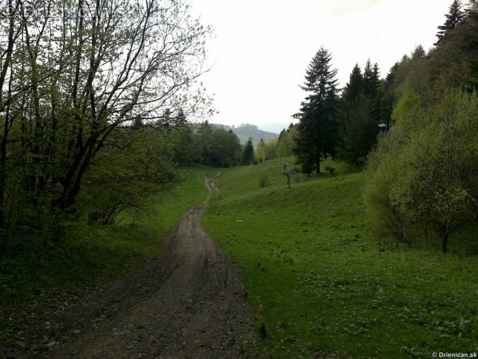 Cesta na Oltar Kameň Drienica