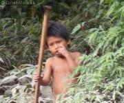 Dobrodrúžstva v Južnej Amerike