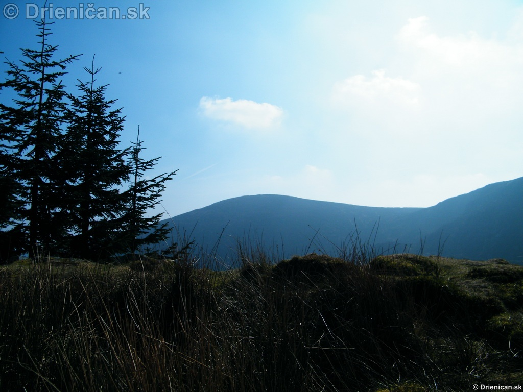 Wicklow Mountains Walk, Ireland
