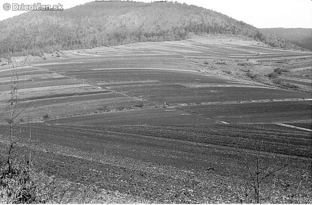 Časť chotára obce Drienica pred založením JRD
