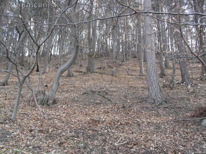 Drienica, zaujimave pohlady, april 2012_36