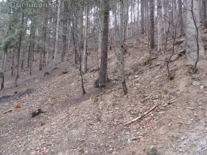Pretvaranie lesa na obraz ludsky_14