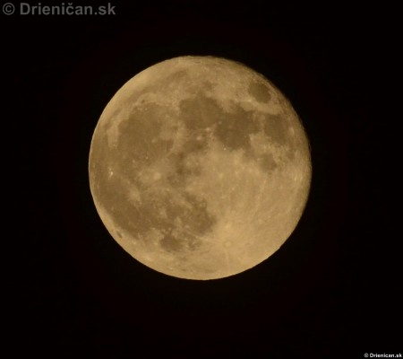100-rocny mesiac fotografie 2012_12