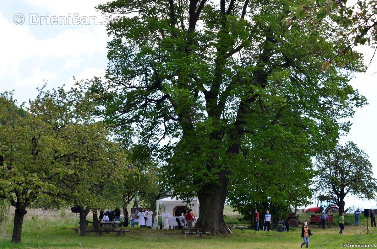 Bohosluzba pri Kaplicke v Drienici,2012_44