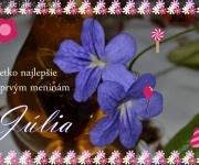 Všetko najlepšie k prvým meninám Júlia,22.máj 2012