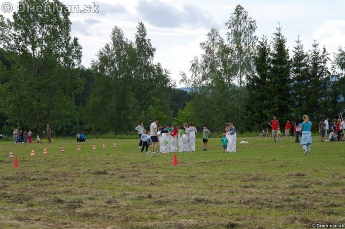 Den Deti Drienica 2012_12