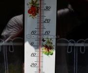 Pohľad na teplomer jasne ukazuje nedostatok vlahy, 2012