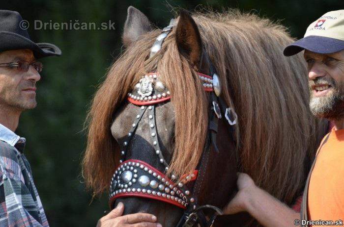 Furmanske preteky Zlaty Kantar Lutina 2012_001