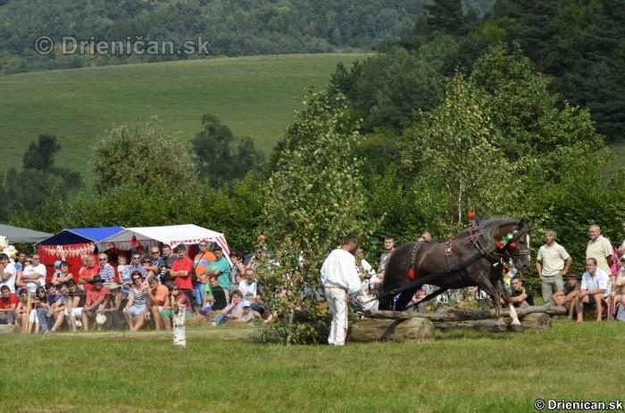 Furmanske preteky Zlaty Kantar Lutina 2012_011