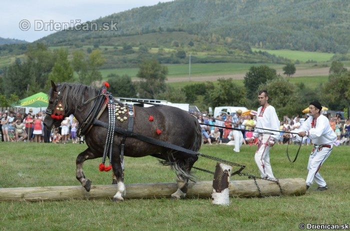 Furmanske preteky Zlaty Kantar Lutina 2012_021