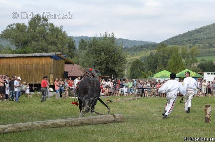"""Furmanské preteky o """"Zlatý Kantár"""" Ľutina 2012"""