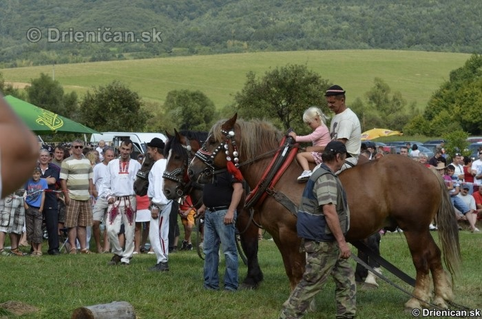 Furmanske preteky Zlaty Kantar Lutina 2012_023