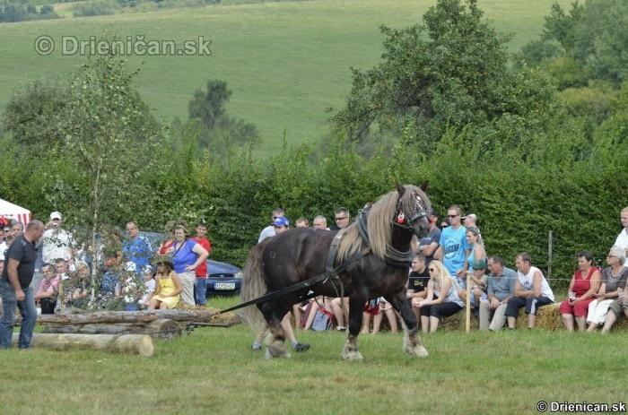 Furmanske preteky Zlaty Kantar Lutina 2012_029