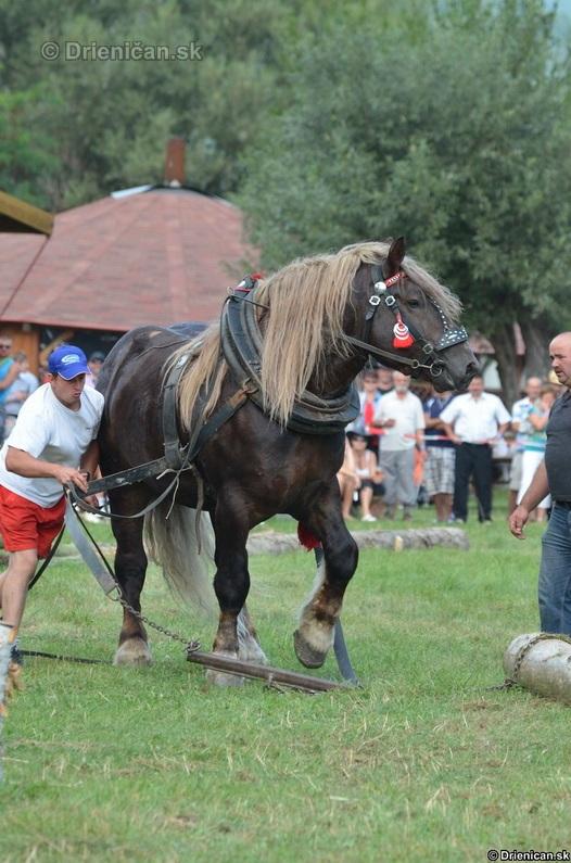 Furmanske preteky Zlaty Kantar Lutina 2012_040