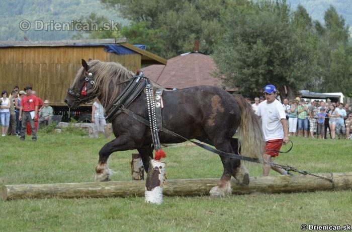 Furmanske preteky Zlaty Kantar Lutina 2012_046