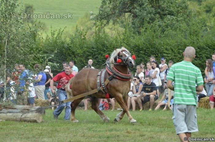 Furmanske preteky Zlaty Kantar Lutina 2012_077