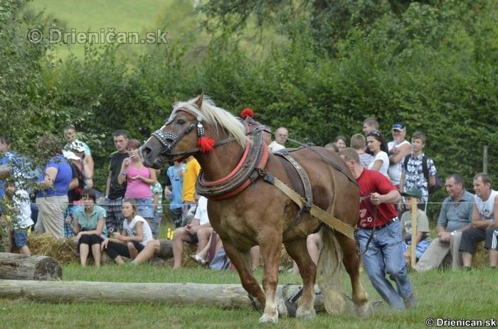 Furmanske preteky Zlaty Kantar Lutina 2012_078