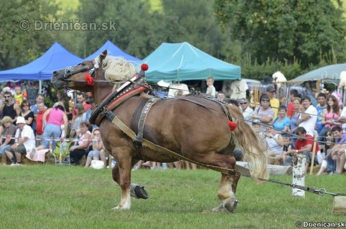 Furmanske preteky Zlaty Kantar Lutina 2012_081