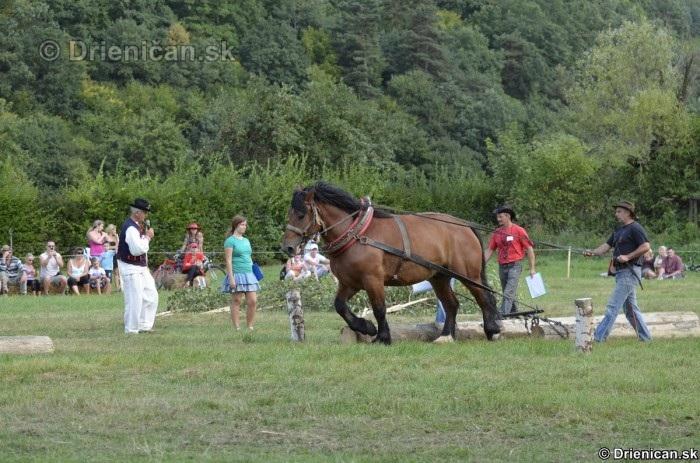 Furmanske preteky Zlaty Kantar Lutina 2012_085