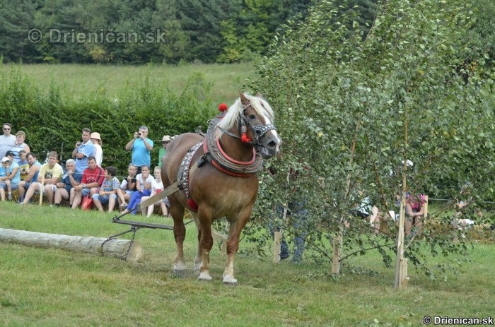 Furmanske preteky Zlaty Kantar Lutina 2012_091