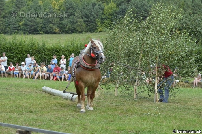 Furmanske preteky Zlaty Kantar Lutina 2012_092
