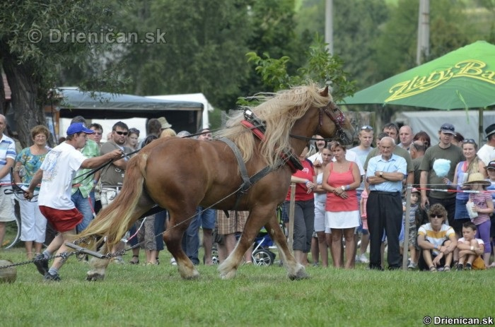 Furmanske preteky Zlaty Kantar Lutina 2012_100