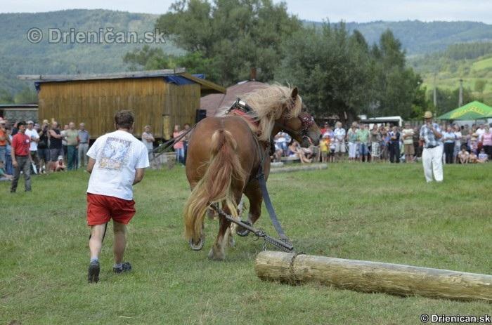 Furmanske preteky Zlaty Kantar Lutina 2012_112
