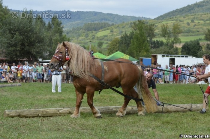 Furmanske preteky Zlaty Kantar Lutina 2012_116