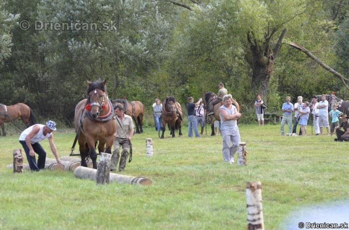 Furmanske preteky Zlaty Kantar Lutina 2012_134